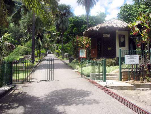 Seychelles Enews Opposition Call For More Botanical Gardens